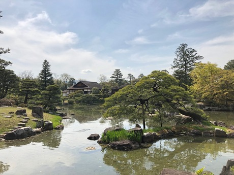 katsura02.jpg